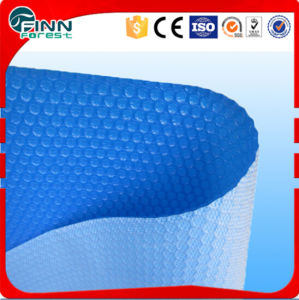 400microton Plastic Swimming Pool Cover (FL-311) pictures & photos