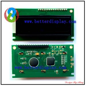 LCM LCD Panel LCD Display Customized Va LCD Screen pictures & photos