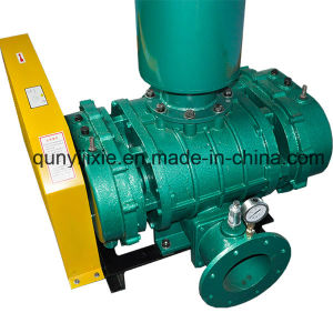 Low Noise Roots Blower for The Incinerator pictures & photos