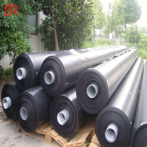 Special HDPE Geomembrane Sewage Pool pictures & photos