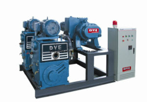 High Performance Rotary Piston Vacuum Pump with CE Certificates pictures & photos