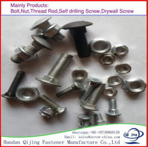 Carriage Bolt with Flange Nut pictures & photos