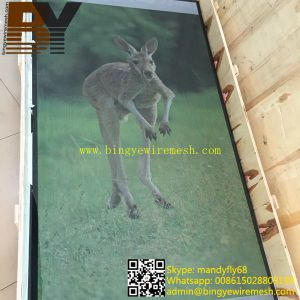 Security Door Screen for Door or Window Mesh pictures & photos