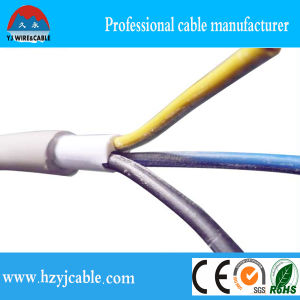 Factory Price 3 Core PVC Jacket Double Sheath Solid Electric Cable pictures & photos
