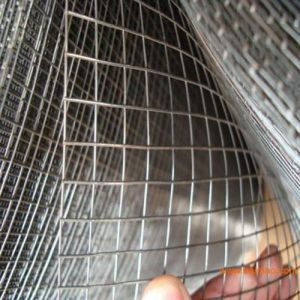 Electro-Galvanized Square Welded Wire Mesh pictures & photos
