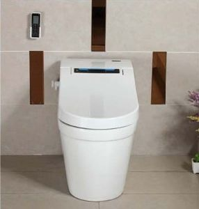 Best Price Ce PP/Ceramic Boday Intelligent Toilet (W1505) pictures & photos