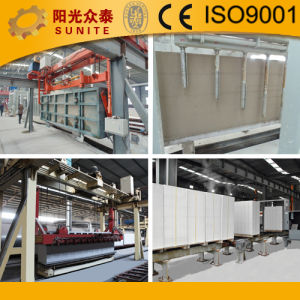 AAC Block Machine (annual capacity: 30000-300000 cubic meters AAC blocks) pictures & photos