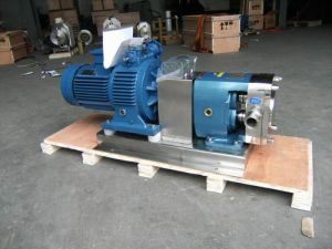 Rotor Pump pictures & photos
