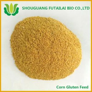 Corn Protein Feed for Animal Feed with High Quality
