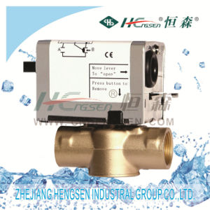 Df-04 Internal Thread Motorized Valve for Central Heating pictures & photos