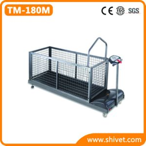 Big Dog Treadmill (Up to 110KG) (TM-180M) pictures & photos