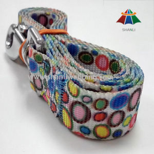 Colorful Pattern Printed Webbing, Pet Leads, Dog Leash pictures & photos