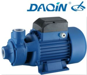 Vortex Water Pump (QB-70) pictures & photos