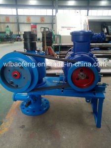 Petroleum Progressive Cavity Pump Horizontal Ground Driving Device pictures & photos