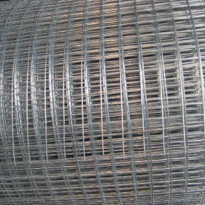 Steel Wire Welded Wire Mesh Used in Mines pictures & photos