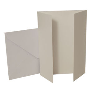 "Blank Greeting Card, 5 X 7"", Tri Fold White 10pk pictures & photos"