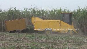 Sugarcane Combine Harvester pictures & photos