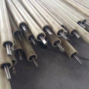 Tfp Parallel Roller for Conveyor Belt Return Idler or Production Line pictures & photos
