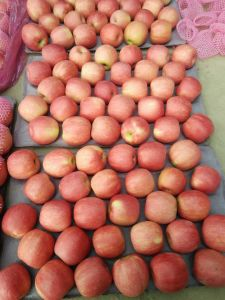 Fresh Pink Lady Apple Fruit pictures & photos
