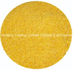 Hulled Yellow Millet for Sale