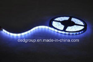 SMD5630 120LEDs/M LED Flexible Stripe Light Multi Color Avilable pictures & photos