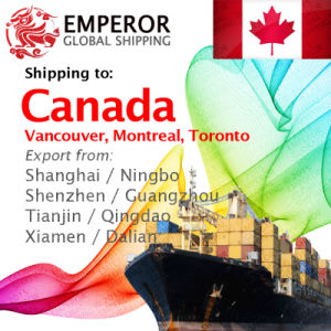Sea Freight Shipping From China to Canada