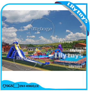 China PVC Tarpaulin Giant Inflatable Water Slide for Adult pictures & photos