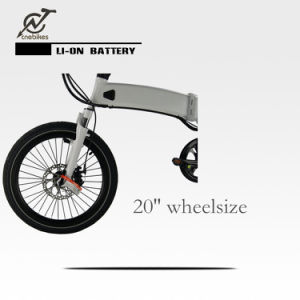 36V 250W Brushless Hi-Speed Rear Motor Electric Bike pictures & photos