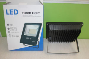 100W 150W 200W IP66 LED Flood Light pictures & photos