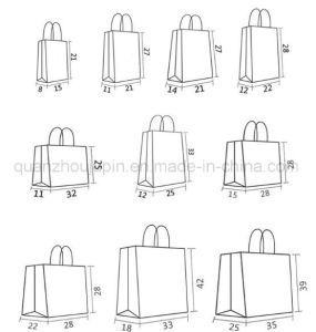 OEM Kraft Paper Various Shopping Hand Bag pictures & photos