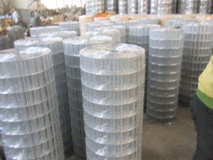 """High Quality 2""""*3"""" Welded Wire Mesh Fence pictures & photos"""