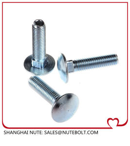 Auto Bolts (DIN603) pictures & photos