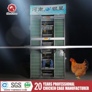 Poultry Farm Equipment Galvanized Layer Chicken Cages Factory pictures & photos