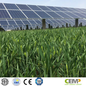 on-Grid & off-Grid Power Stations Highly Recognized 320W Polycrystalline Solar Panel pictures & photos