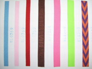 Polyester Strap pictures & photos