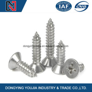 Countersunk Head Cross Recessed Wood Screws with Zinc Plated pictures & photos