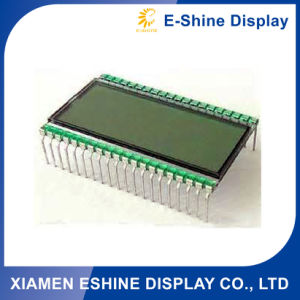 Customized Small LCD Display with Grey Backlight pictures & photos