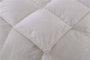 100% Cotton White Duvet Machine Washable Skin Comfort Bed Linen Comforter pictures & photos