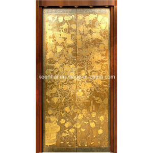 Etched Finish Stainless Steel Passanger Elevator Door Panel Decoration pictures & photos
