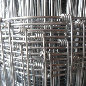 Sheep/Goat/Cattle Fence/Farm Fencing Galvanized Page Wire pictures & photos
