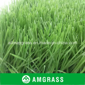 S Shape Soccer Field Artificial Grass with High Quality pictures & photos