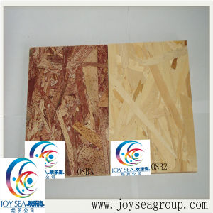 OSB for Whole Sale with High Quality pictures & photos