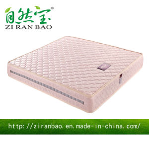 Qualitly Comfortable Compressed Wholesale Spring Mattress (ZRB-836)