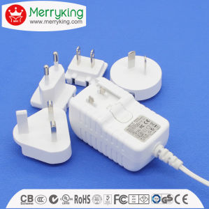 Interchangeable and VI Level Energy Efficiency Switching Power Adapter pictures & photos