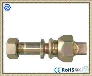 Colored Zinc-Plated Wheel Bolt and Nut pictures & photos