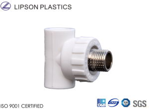 PPR Pipe Fitting Male Tee pictures & photos