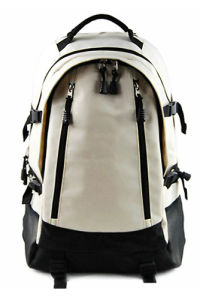Backpacker School Bag Traveling Bag (SB2067) pictures & photos