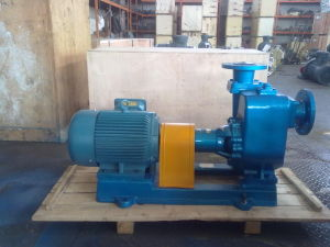 Cyz Series Self-Priming Centrifugal Cargo Oil Pump pictures & photos