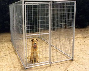 Australian Standard Large Outdoor Galvanised Chain Link Pet Enclosure pictures & photos