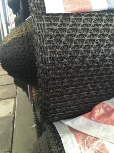 PP Triangle Geogrid Biaxial Geogrid pictures & photos